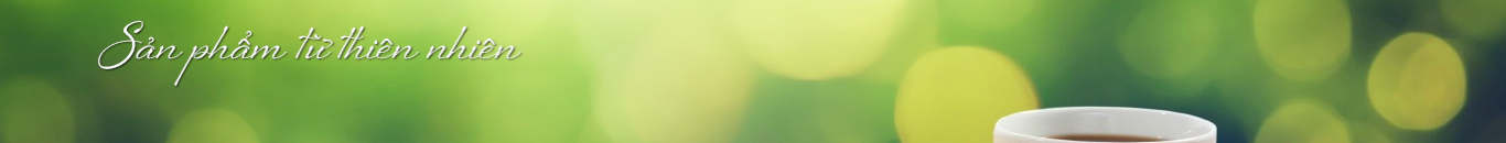 banner-9787.png